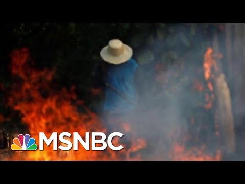 Brazilian President Jair Bolsonaro To Send Troops To Battle Amazon Fires | Hardball | MSNBC
