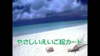 やさしいえいご絵カード 日本でいちばんやさしい えいご絵カード語彙学...