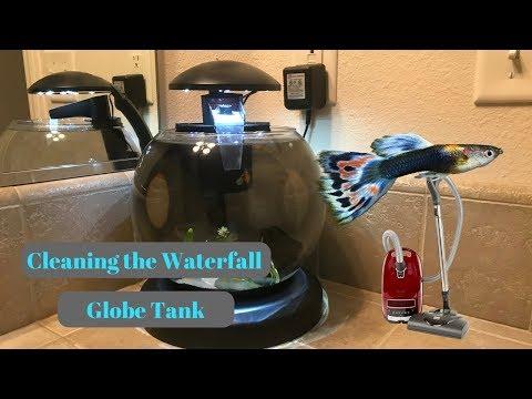 How to clean the Tetra Waterfall Globe aquarium