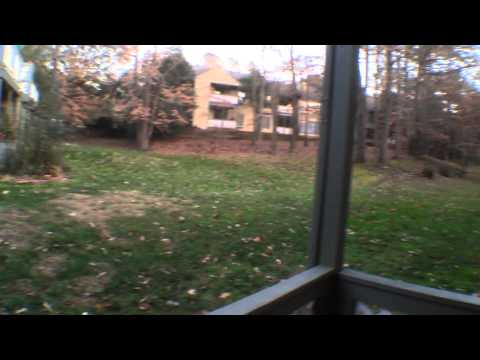 Condo in the Woods in North Raleigh NC