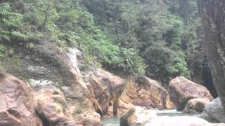 Download Video Bercinta di hutan cianjur MP3 3GP MP4