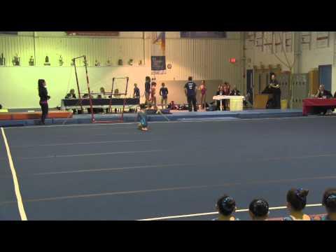 Gemini Gymnastics Provincial Qualifier Meet - Marley Floor (Jan. 24, 2015)