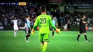 Seagul Bird gets hit by football Soccer Ball Sydney FC Melbourne City FFA Cup Final