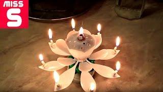 ✔ Свеча Музыкальный Цветок для Торта(Свеча Музыкальный Цветок для Торта https://www.youtube.com/watch?v=vuepK-fYfQ0 Видео из моей личной жизни )) Не забудь подпис..., 2017-02-26T14:36:09.000Z)