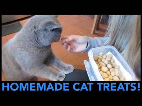 HOMEMADE CAT TREATS! | CHRIS & EVE