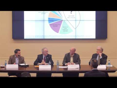 Panel Video - The Paris Climate Treaty:  What Can the House Do?
