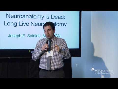 Neuroanatomy is Dead: Long Live Neuroanatomy - American Academy of Neurology