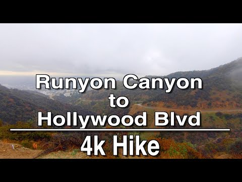 Walking Tour from Runyon Canyon to Hollywood Blvd | 4K + Ambient Relaxation Music
