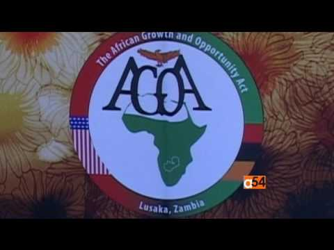 U.S. and African Business Relations Under Trump