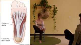Somatic Relief for Tight Neck Muscles by Stretching your Plantar Fascia