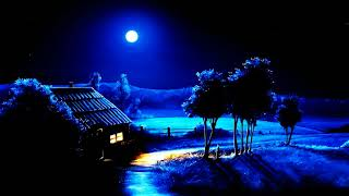 Suara Jangkrik Dan Caricangkas  Bikin Hati Tenang Pada Malam Hari.