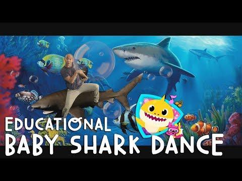 BABY SHARK DANCE - EDUCATIONAL VERSION! (PARODY)