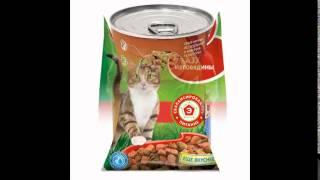 акана корм для кошек