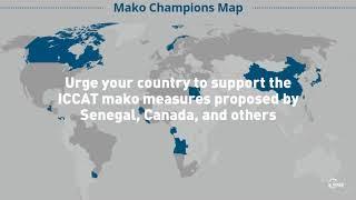 Mako Sharks Champions Map