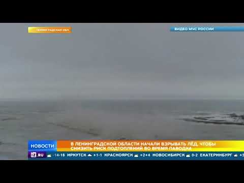 На реках Ленинградской области начали взрывать лед чтобы избежать подтоплений