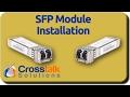 SFP Module Installation
