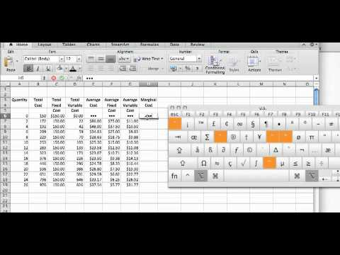 Cost Calculations Using an Excel Spreadsheet mp4