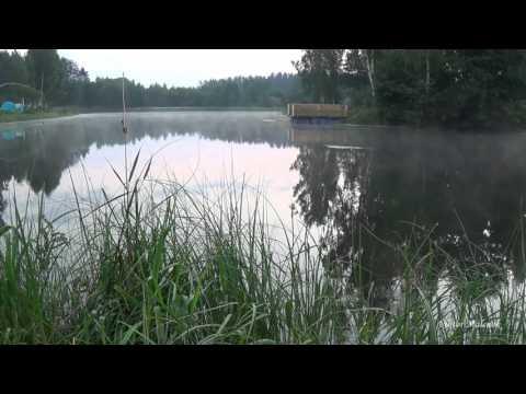 Медитация. релакс. Йога. Природа. Утро. Туман. Озеро. Пение птиц. Красивая музыка.