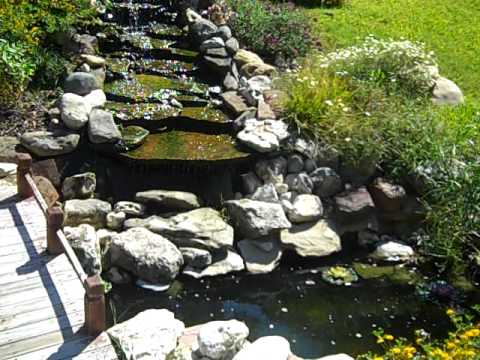 My koi pond youtube for My koi pond