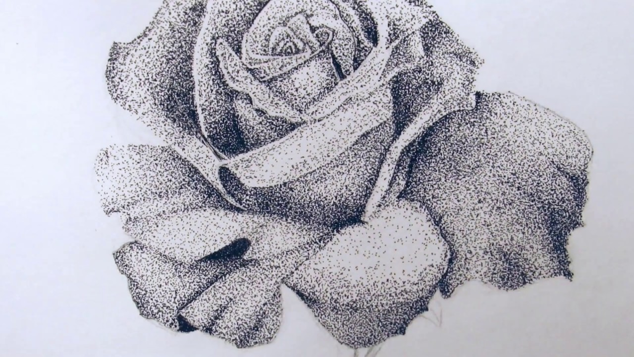 Rose Drawing Pointillism Youtube