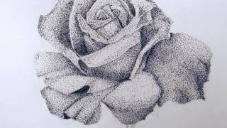 Rose Drawing (Pointillism)