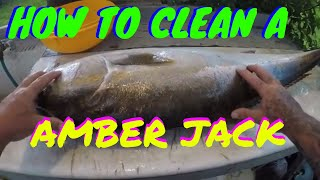 HOW TO CLEAN A AMBER JACK (A.J)