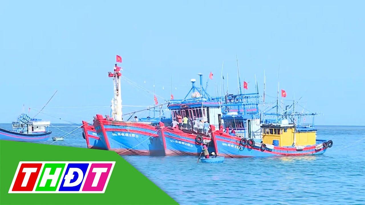 Ngư dân Lý Sơn áp dụng công nghệ để đánh bắt xa bờ   THDT