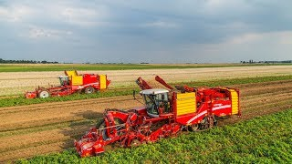 GRIMME | Best of Potato Harvesting Technology 2017