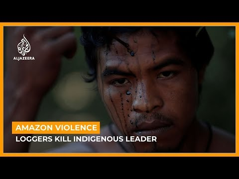Brazil Amazon forest defender shot dead by illegal loggers