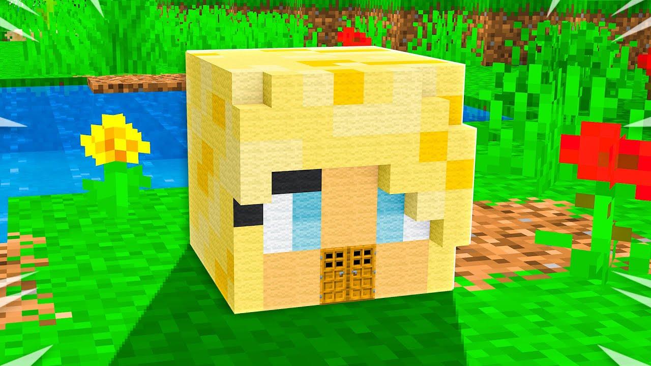 Download TINY Minecraft House Battle vs PrestonPlayz!