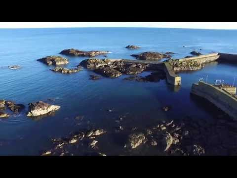 St Abbs flight