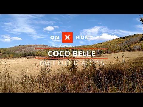 Coco Belle Public Access Project