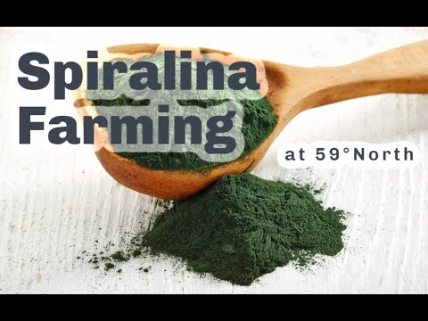 S4 ● E9 What's Spirulina farming at 59°N got to do with pastured broilers?
