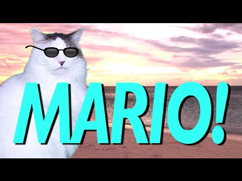 HAPPY BIRTHDAY MARIO! - EPIC CAT Happy Birthday Song