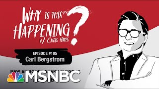 Chris Hayes Podcast With Carl Bergstrom | Why Is This Happening? - Ep 105 | MSNBC