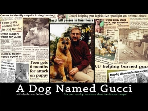 Random Movie Pick - A DOG NAMED GUCCI - trailer #1 YouTube Trailer