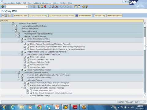 SAP AP config