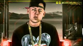 Cosculluela   El Insecto Original Video Music REGGAETON 2014