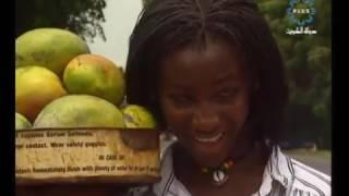وثائقي /السنغال