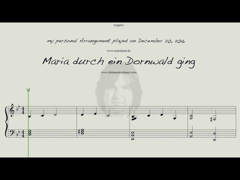 Maria durch ein Dornwald ging  -  my private Version