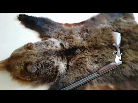 Вопрос: Шьют ли шубы из шкуры медведя?