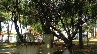 👣 Praça Central de Aguaí -SP -A Cidade que me acolheu á 14 anos! 👣
