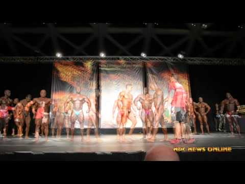 2015 IFBB Puerto Rico Pro – 212 Class Prejudging