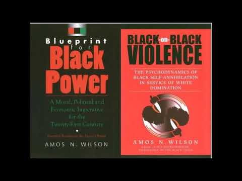 Mhenga Amos N.  Wilson: Critical Analysis and the Application of Power