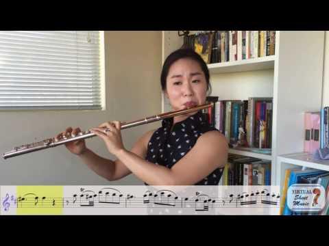 Flute Lesson  How to play Mozarts Flute Concerto No 2 K 314