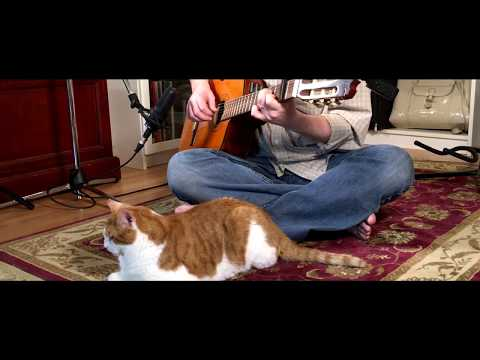 Our House - (Crosby, Stills & Nash) - Fingerstyle Guitar - Scott Pettipas