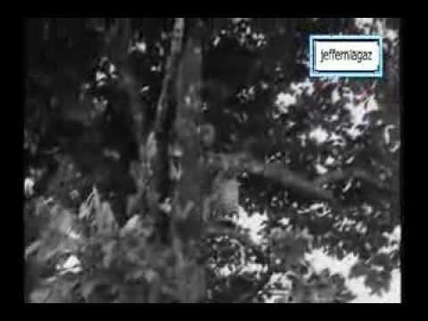 OST Ali Baba Bujang Lapok 1960 - Hoi Ya Hoi