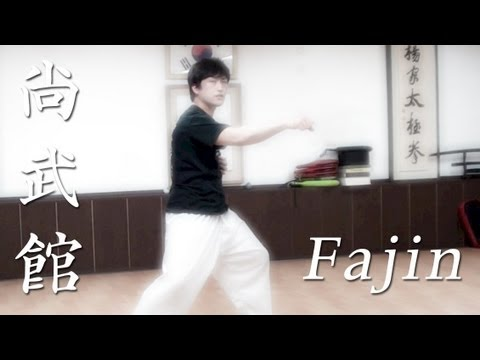 Download Chen Taichi Fajin basics explained