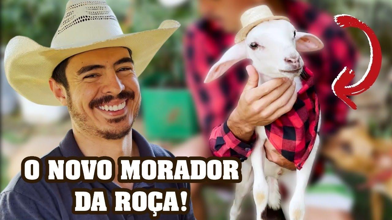 O NOVO MORADOR DA ROÇA!
