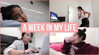 [VLOG] A Week in My Life: Mon & Tue (리사의 일주일: 월요일 & 화요일편)
